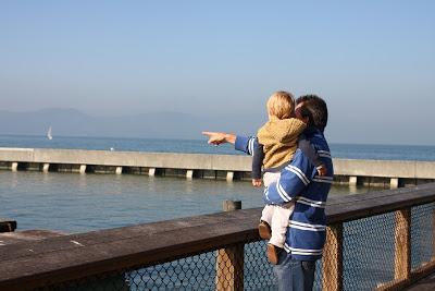 爸:看!又一隻海獅被擠下去了~
